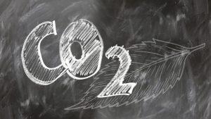 въглеродна неутралност